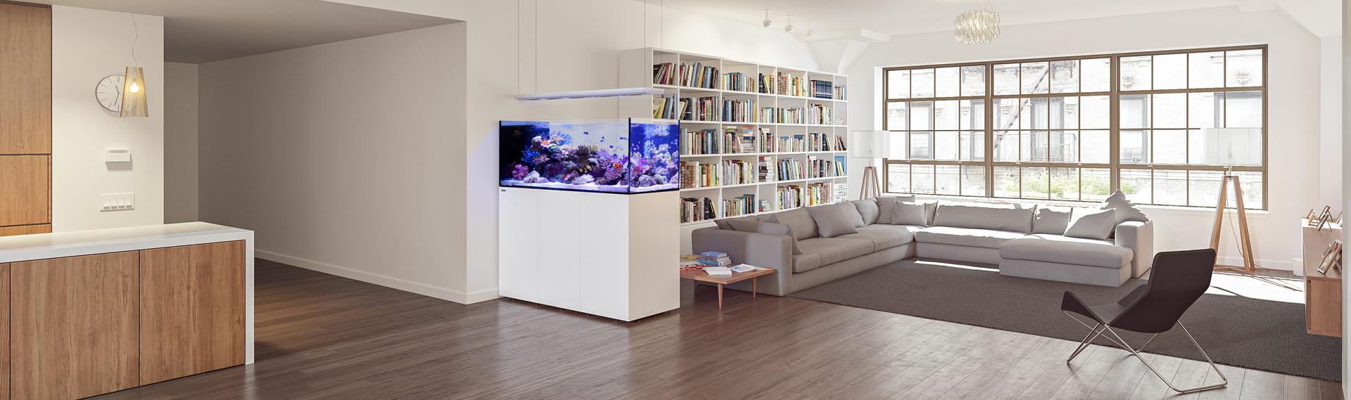 departamento-acuario